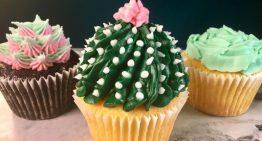 Succulent Cupcakes CARLA HALL
