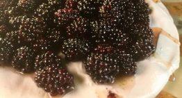 Blackberry Lime Pavlova MICHAEL SYMON
